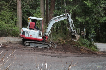 grading near stump
